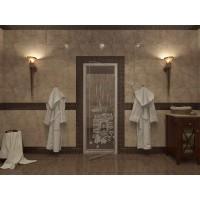 Стекляная дверь Doorwood Банька-1