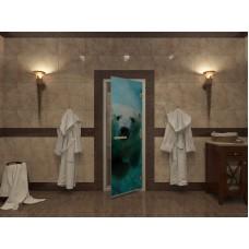 Стекляная дверь Doorwood Арт-13